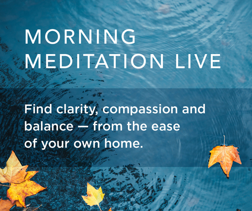 Morning Meditation live  find clarity compassion and balance from the ease of your own home